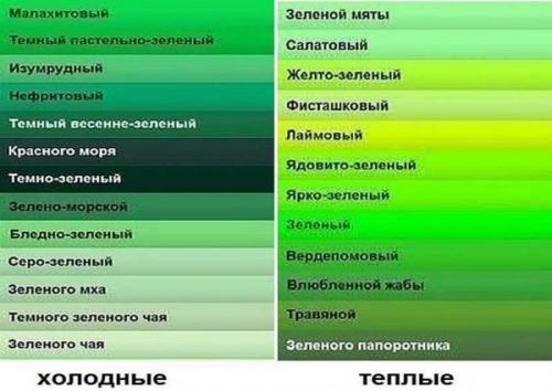 Кухни дизайн с зелеными обоями. Зеленый — это, какой оттенок?