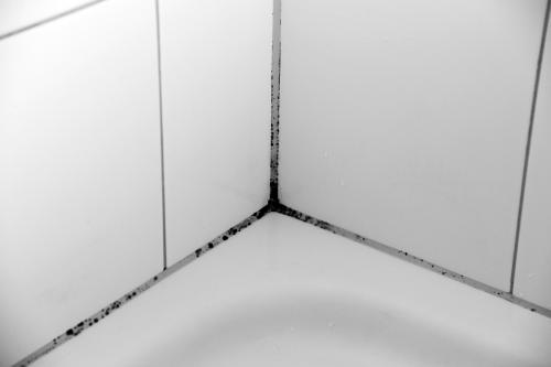 Черные пятна в ванной. Как удалить плесень и грибок с керамической поверхности