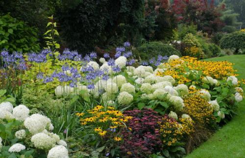 Ландшафтное оформление садового участка своими руками клумб дорожек. Варианты клумбы: как правильно декорировать